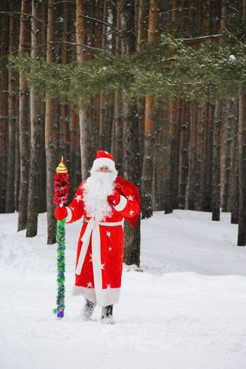 Man dressed as santa claus standing on snow against trees in forest
