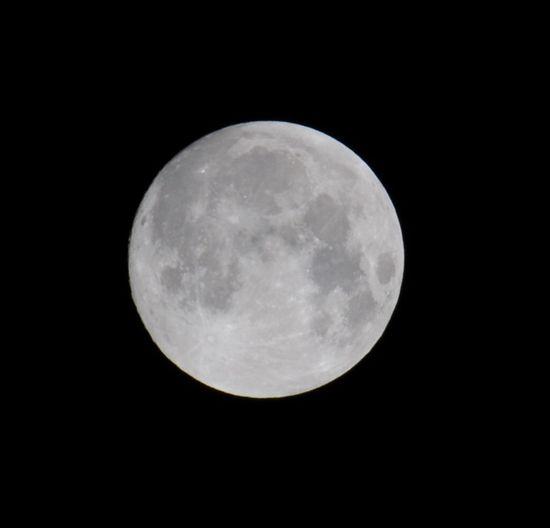 十五夜 Full Moon Nikon D300 Taking Photos Streetphotography たまには、一眼レフで(笑) Moon