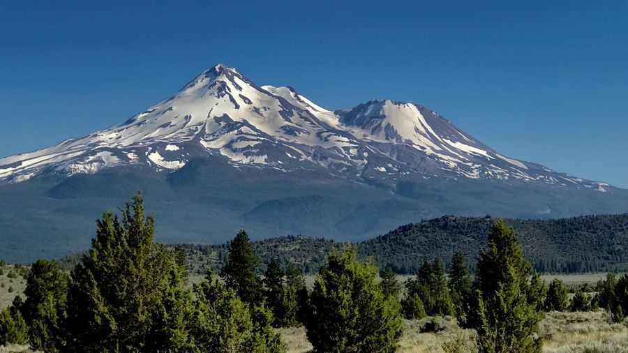 My Shasta California Dreamin Mountain Snow Snowcapped Mountain Beauty In Nature Mountain Range Nature Mountain Peak Scenics Majestic Blue Tree Tranquil Scene Landscape Tranquility No People Peak Clear Sky Outdoors Day Cold Temperature California