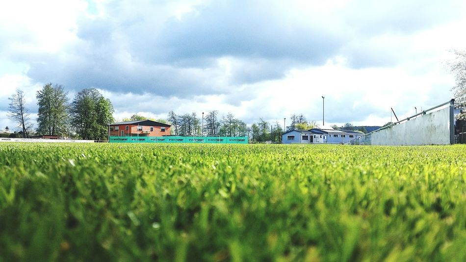 Sce First Eyeem Photo Green Fresh Nature Rasen Soccer Sky Beautiful Nature