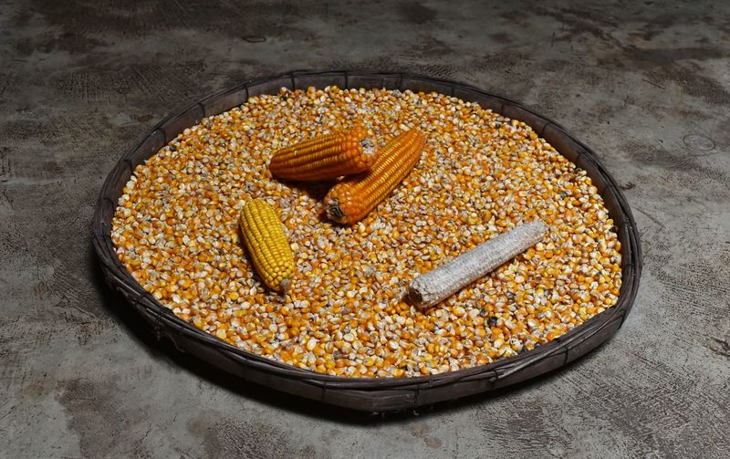 High Angle View Of Corn And Kernels In Plate On Floor