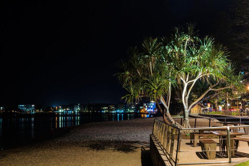 Pandanus On The Bulcock Beach Australia Beach Beautiful Caloundra Night Pandanus Queensland Shadow Traveling