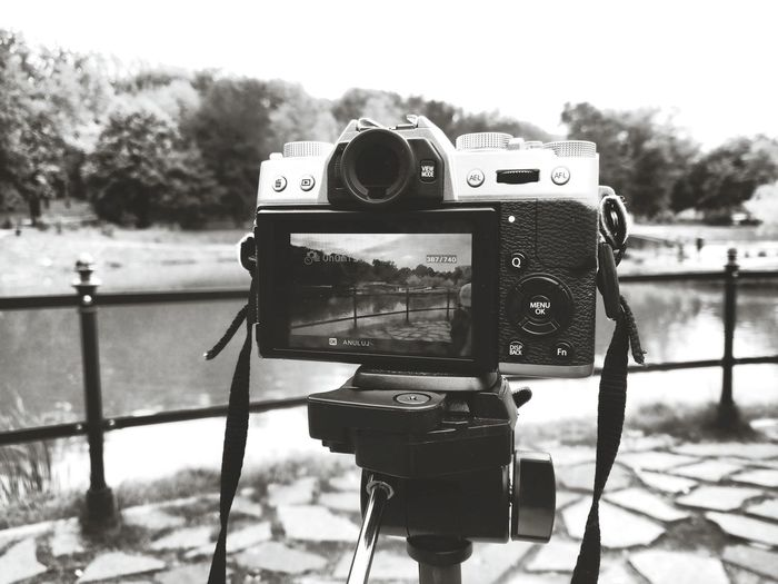 Connection Technology Old-fashioned Man Made Object Close-up Photographing Tree Hobbies Retro Styled Coin Operated Number Camera - Photographic Equipment Travel Destinations SLR Camera Focus On Foreground FUJIFILM X-T10 Wasiak Taking Photos Timelapse Timelapsephotography Park Trees Pound Bridge Cloudy Day