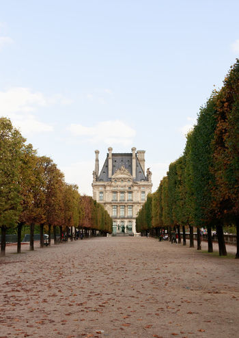If Trees Could Speak Iftreescouldspeak France Louvre Paris ❤ Trees Architecture Building Exterior Built Structure Day History Museum Nature No People Outdoors Sky Tourist Destination Travel Destinations Visual Creativity