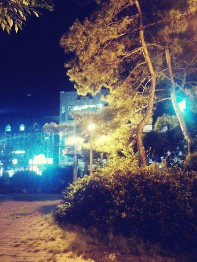 밤산책^^
