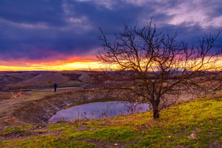 Crete Senesi Torre A Castello Bare Tree Beauty In Nature Chianti Cloud - Sky Day Full Length Grass Italian Landscape Lifestyles Men Mountain Nature One Person Outdoors People Real People Scenics Silhouette Sky Sunset Tranquil Scene Tranquility Tree Women