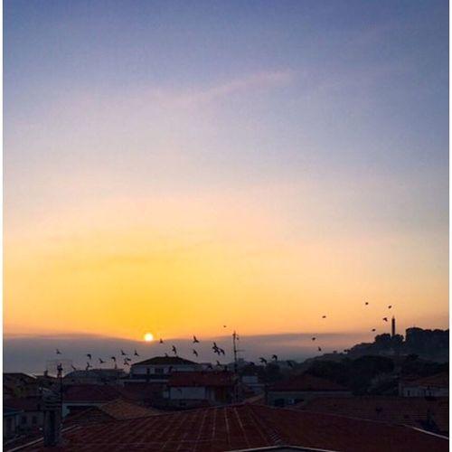 Urban sunrise Sky Sunshine Sun Sunrise Sunrise_Collection Urbanphotography Urban Landscape