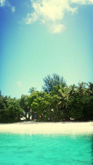 Maldive islands Enjoying The Sun