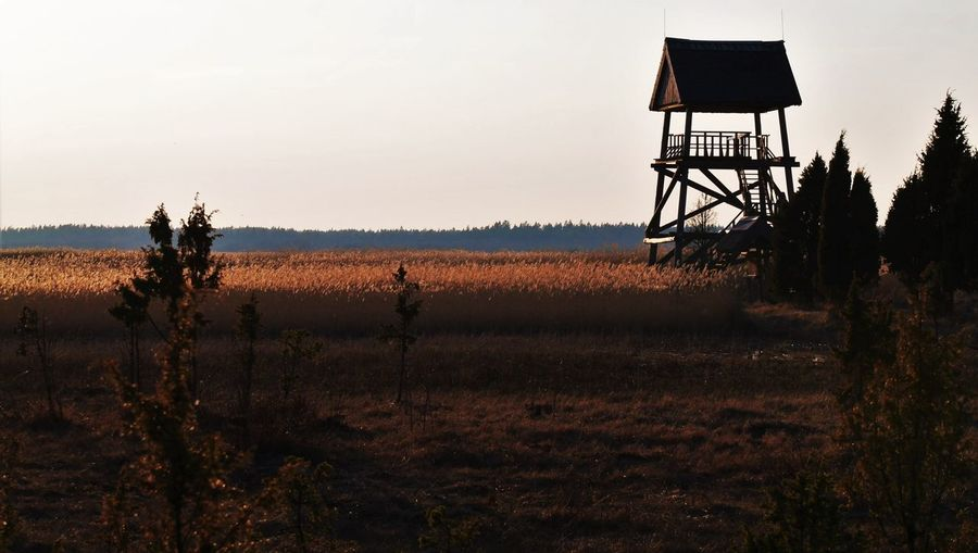 Baltic Countries Baltic States Bird Watching Tower Eastern Europe Europe Evening Evening Light Idyllic Kaņieris Lake View Landscape Latvia Natural Nature Northern Europe Observation Tower Reeds Tower Tranquility Dramatic Angles TakeoverContrast Perspectives On Nature
