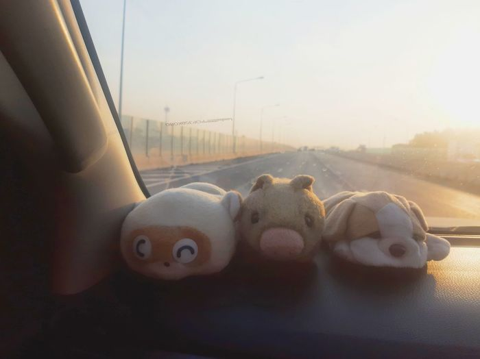 Close-up of stuffed toy car