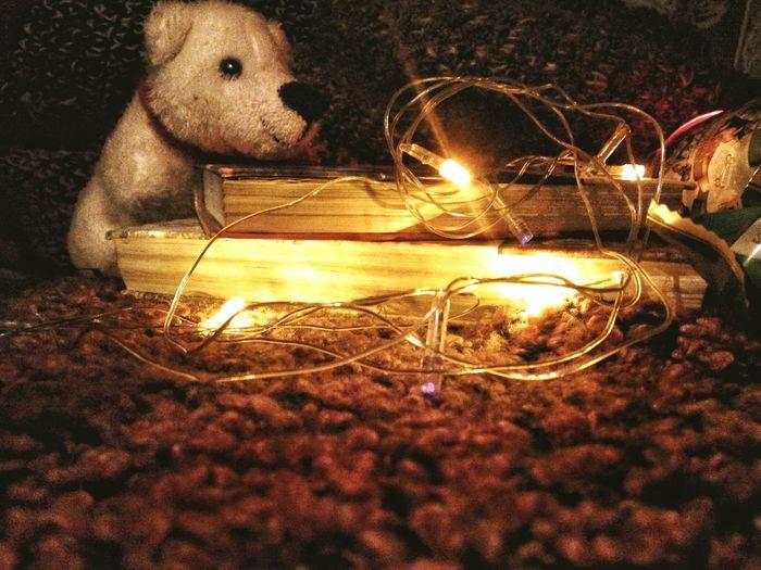 Night No People Burning Illuminated Christmas Decoration Christmas Outdoors