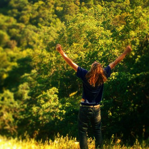 Capturing Freedom Amongst The Wild Brady Lewis Fate's Forest Tree Trees Wild Explore Adventure Is Out There