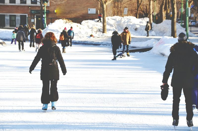 Winter Cold Temperature Snow Large Group Of People Outdoors Warm Clothing Winter Sport Tree Women Full Length People City Ice Rink Adult Nature Day Adults Only Ice Skate The City Light Connected By Travel Second Acts
