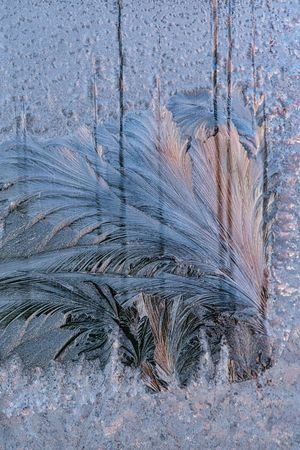 2018 Eisblumen Am Fenster Close-up Day Frosted Glass Kälte Nature No People Outdoors Textured