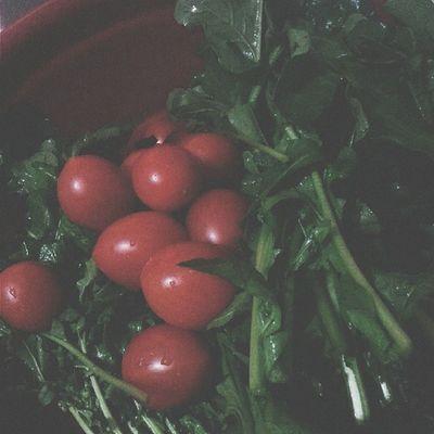 Roka. Roka Tomato Red Green vsco vscocam