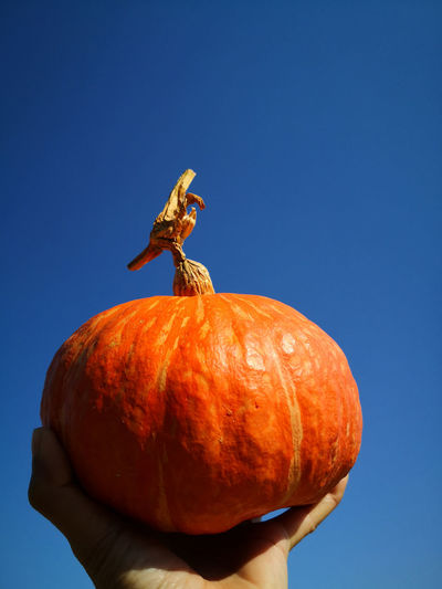 Close-up of hand holding pumpkin against clear blue sky