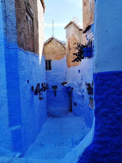 chefchaoune, the blue city Soonjourney MyWanderLust Morocco Africa Town City Local Unique Water Architecture Building Exterior Sky Built Structure