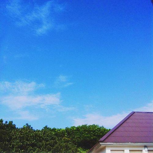 ท้องฟ้าสดใสไม่เกรงใจอนาคตกูบ้างเลย😒 | ท้องฟ้าสว่างกว่าอนาคตกูซะอีก😭😭 Ripstatistic Byebyestatistic Statisticexamination Midtermcrisis University MFU Sky Cloud Thailand