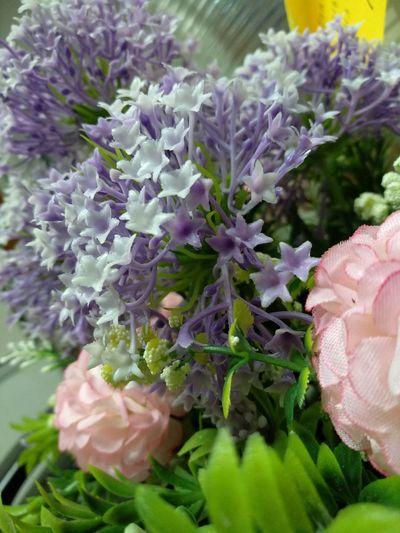 fake or false Plastic Flower Fake Or Genuine Plant Life In Bloom