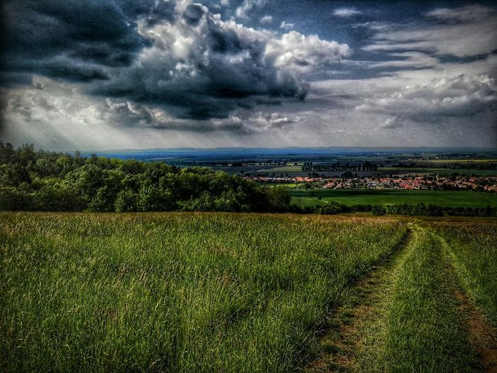 HDR Hanging Out Check This Out Relaxing Taking Photos Panorama Moravia Czech Republic Nature Nature Photography Lowlands Sunny Culture HuaweiP8 My Home Chill Beginnerphotographer