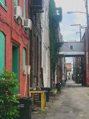 Architecture Building Exterior Built_Structure Day Outdoors No People Sky First Eyeem Photo EyeEmNewHere Beauty In Nature Richmond, VA Tree Streetphotography Alleyway Saturation Morning Happy EyeEmNewHere Let's Go. Together.