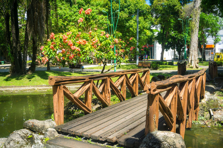 Footbridge Beauty In Nature Day Nature No People Outdoors Table Tree Water Wood - Material