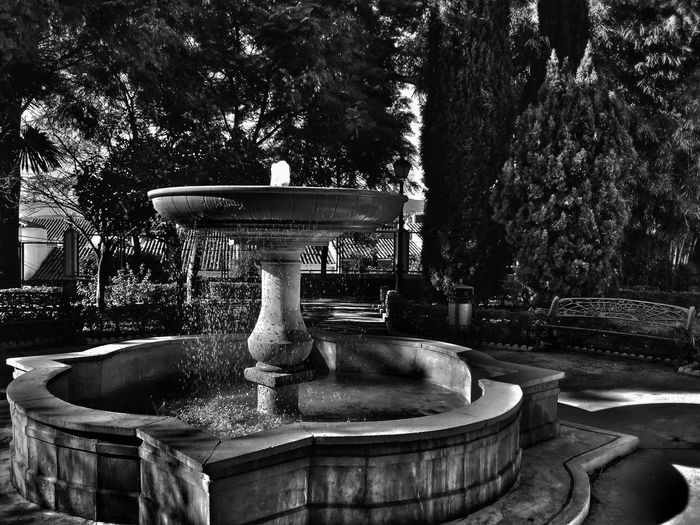 Black&white Black & White Blackandwhite Black And White Blackandwhitephotography Black And White Photography Blackandwhite Photography Monochrome Shades Of Grey Mobile Photography Smartphone Photography Urban Geometry Light And Shadow Creative Light And Shadow Snapseed Still Life AMPt_community Shootermag Turn Your Lights Down Low Getting Inspired Getting Creative Fountain Fuente Moody Garden The City Light The Street Photographer - 2017 EyeEm Awards The Architect - 2017 EyeEm Awards