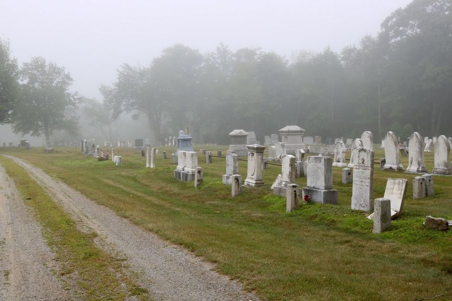 foggy cemetary Cemetery Cross Day Fog Grass Grave Gravestone Graveyard In A Row Memorial Nature No People Outdoors Sky Tombstone Tree