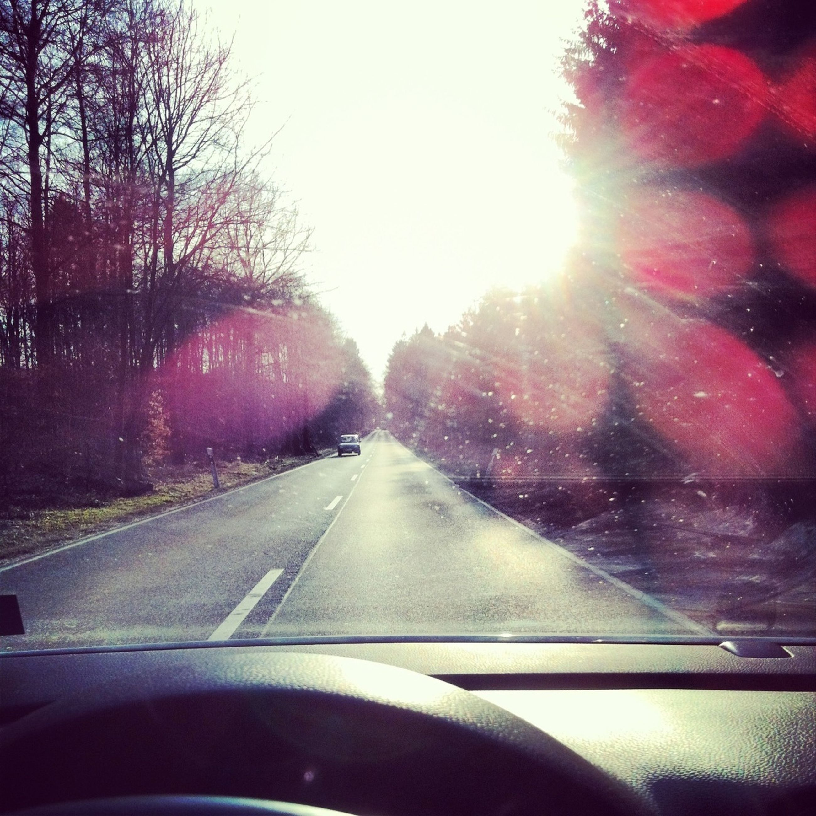 transportation, car, mode of transport, land vehicle, windshield, vehicle interior, car interior, glass - material, road, tree, transparent, sun, window, travel, sunlight, car point of view, road marking, clear sky, on the move, sky