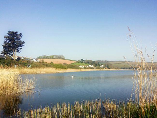 Good morning, Torcross Enjoying LifeLandscape Eye4nature Lake View
