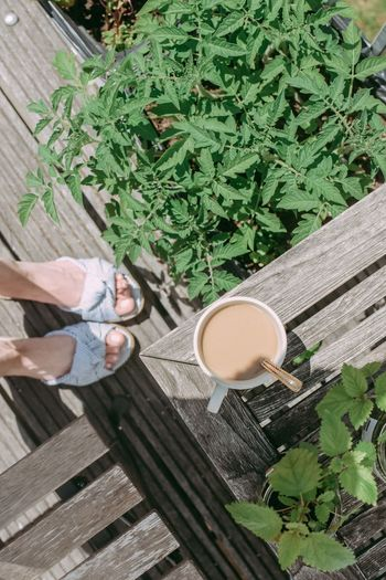 Coffee Coffee Time Summertime Coffee - Drink Coffee Break Cup Drink Food And Drink Refreshment Springtime Summer