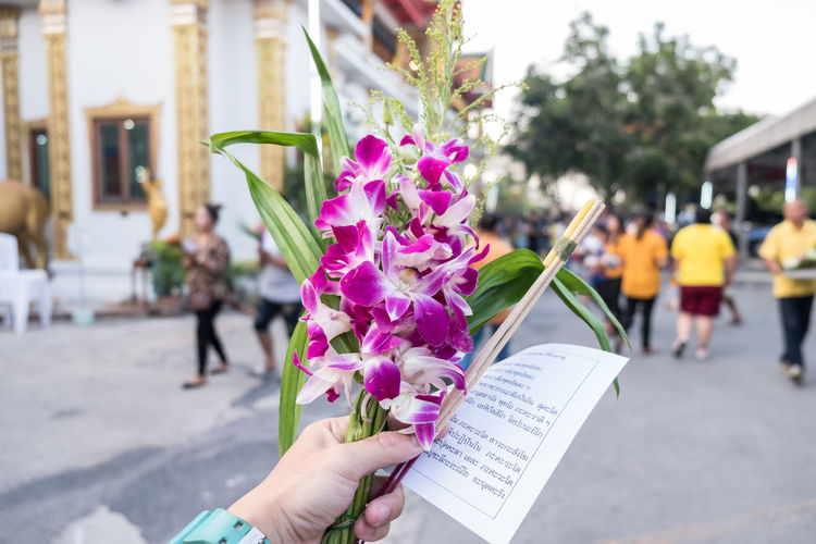 Midsection of person holding pink flower on street