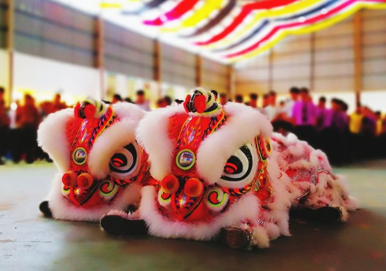 lion dance Indoors  No People Day Food Close-up First Eyeem Photo