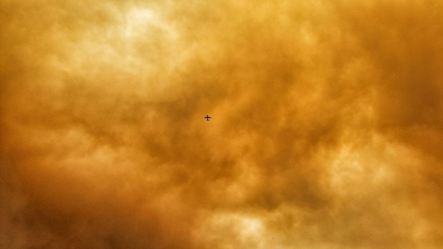 Above me Wildfire Smoke Smoking Me Out Airplane Jet Fighting Fire In The Sky Sky View Smoked Out Still Burning Mountain Fire Santa Clarita Sand Fire Color Of Life