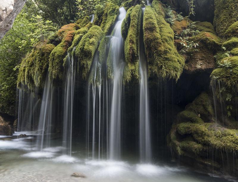 Capelli di Venere waterfalls Capelli Di Venere Salerno Waterscape Casaletto Spartano Cilento Landscape Nature_collection Water Waterfall Waterfalls