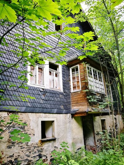 Window History Old Ruin Zerfall House Beauty In Nature Eingewachsen Spooky