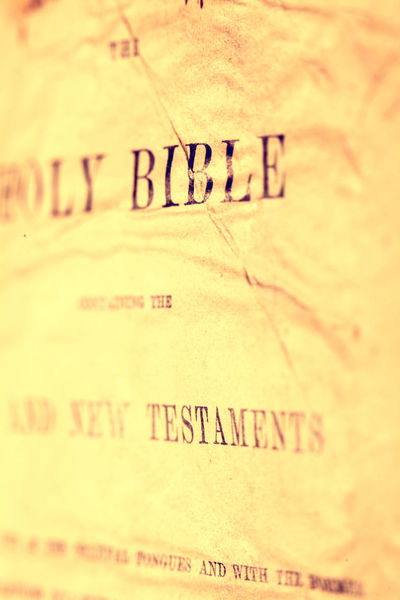 Holy Bible Books Christian Hope Catholic Christian Christianity Church Cross God Jesus Christ Love Spirituality Testament Belief Bible Christ Education Godscreation Holy Holy Book Old Prayer Praying Religion Vintage