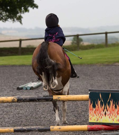 Horse Domestic Animals Animal Themes Mammal One Animal Horseback Riding Livestock Jockey Railing Riding Showjumping young rider Real People Outdoors Day Sitting Horse Racing One Person Competition Sky People