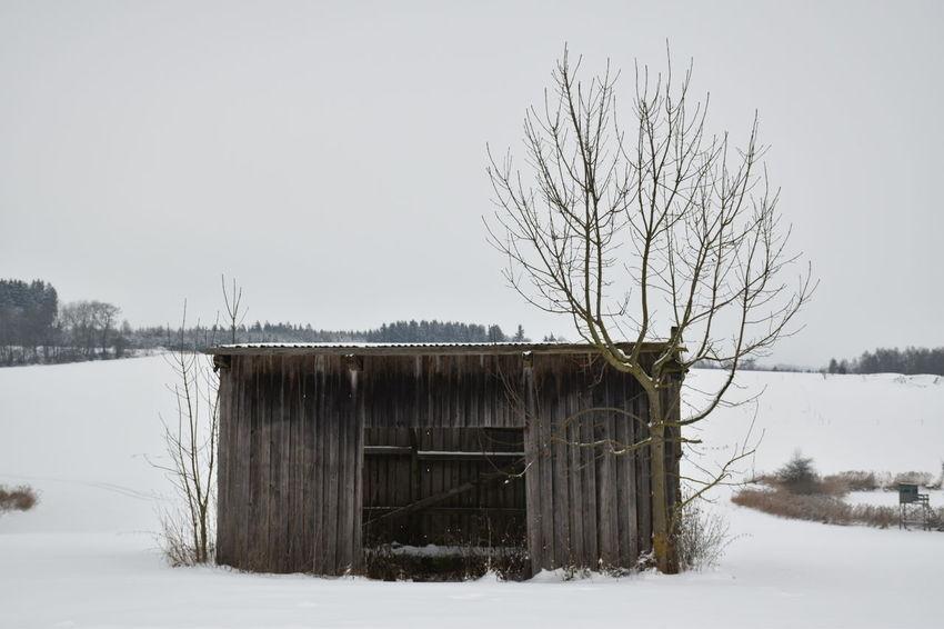 Winter Wonderland Snow ❄ Landscape_captures Old Hut