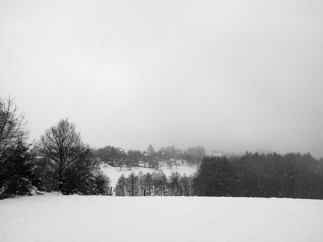 forest and snow Black & White Winter Wintertime Beauty In Nature Blackandwhite Blackandwhite Photography Clear Sky Cold Day Cold Temperature Day Landscape Landscapes Nature No People Outdoors Scenics Sky Snow Snowing Snowy Tranquil Scene Tranquility Tree Weather Winter
