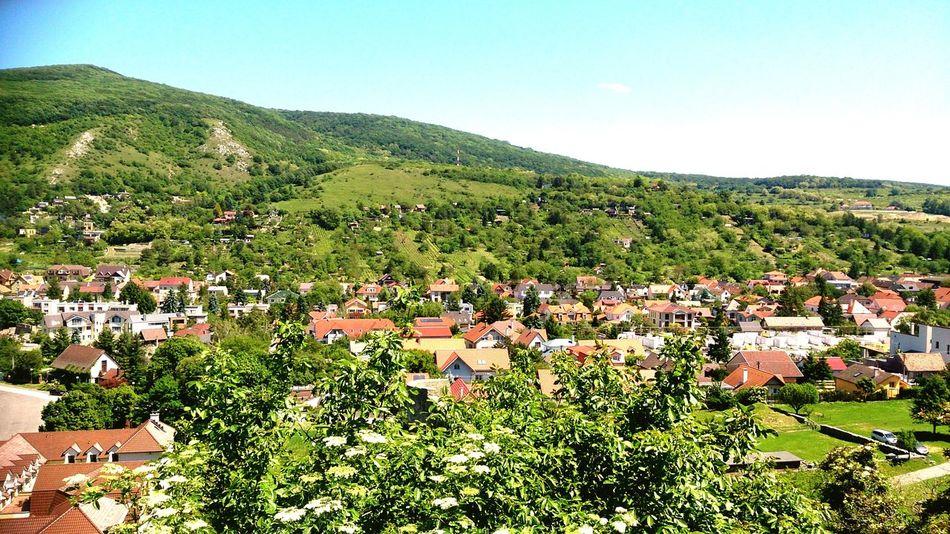 Slovak cultural landscape Mountain Tree Rural Scene Agriculture Field Sunlight Sky Grass Landscape Green Color