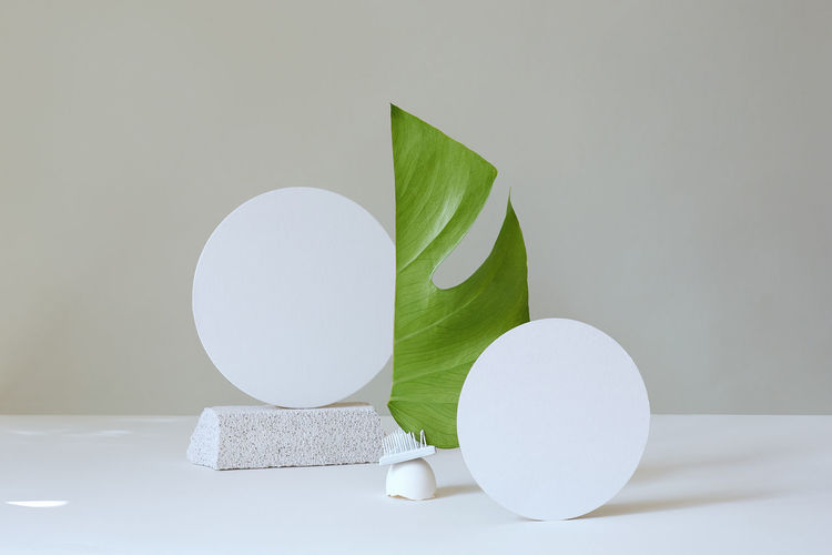 Circle shaped paper amidst leaf against wall