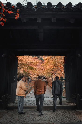 Rear view of people standing by tree during autumn