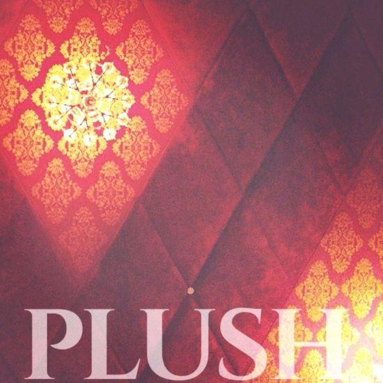 PLUSH Red Interior India EyeEm Best Shots