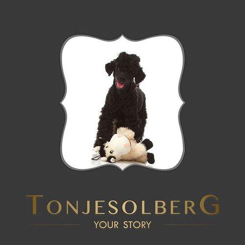Det er torsdag, Throwbackthursday  😀 Jeg har funnet frem denne herlige hunden som var på julebesøk da jeg hadde studio på Hasle. Som dyrelsker varmer det hjertet når kjæledyret tas med på fotograferingen. 💞 TBT  Kjæledyrfotografering Familiefotografering Portrettfotografering Fotografoslo