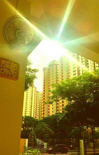 Sun ray shine
