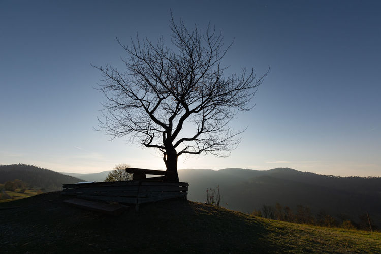 Silhouette bare tree on mountain against sky during sunset