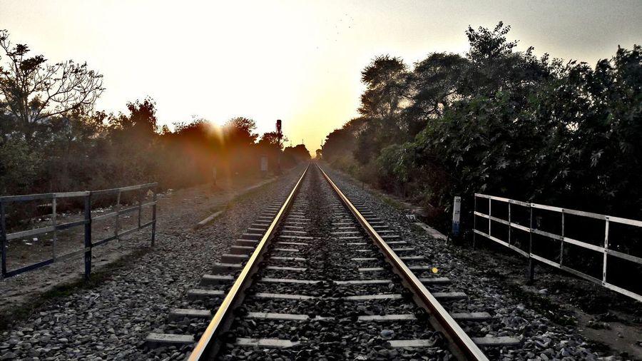 EyeEmNewHere Railroad Track Tree Rail Transportation Transportation Outdoors No People The Way Forward Day Sky Nature