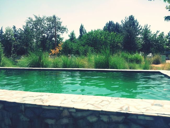 Swimming Pool First Eyeem Photo Relaxing Travelling