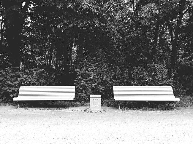 Soaking Up The Sun Park Bench Benches Blackandwhite Bnw Black & White Lithuania